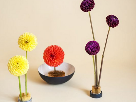 OASIS, FLORAL WIRE OR KENZAN AS A BASE FOR A FLOWER ARRANGEMENT.
