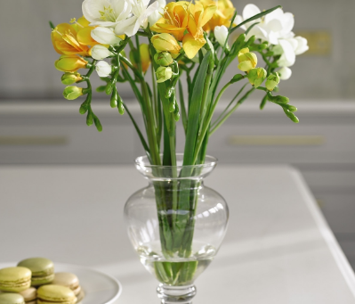 Most popular spring flowers and how to treat them.