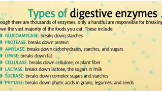All About Digestive Enzymes