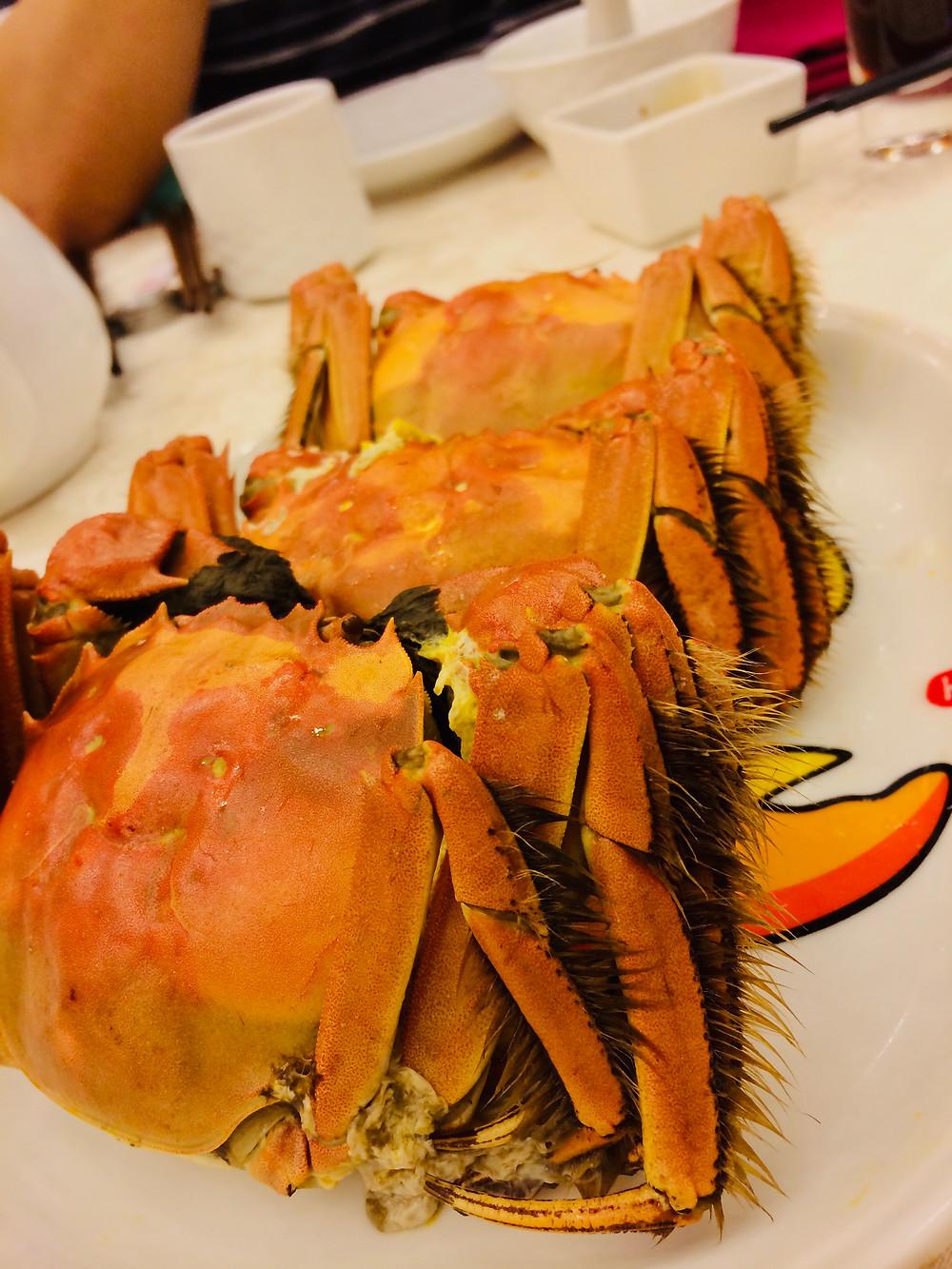 大閘蟹 Hairy crab in Hong Kong