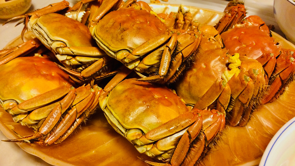 Hairy crab 大閘蟹 in Hong Kong