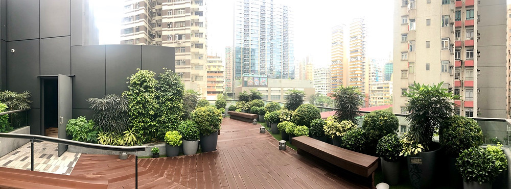The Forest Roof Garden Mong Kok, Hong Kong