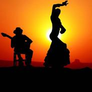 H_Flamenco-Vrijgezellenfeest - kopie.jpg