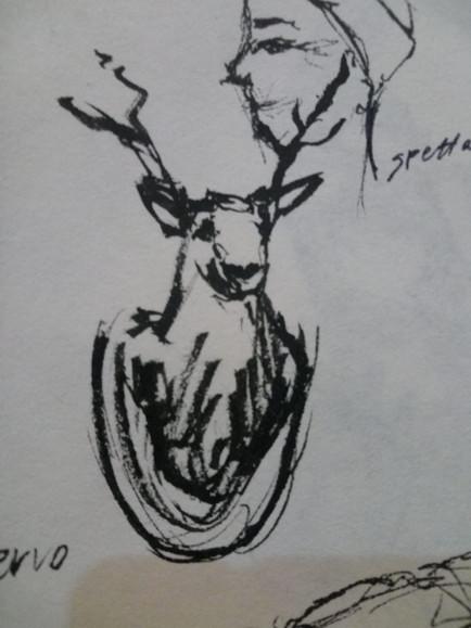 un altro cervo.jpg