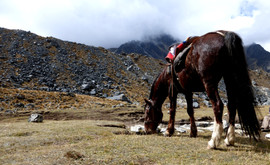 En_montant_vers_le_Salkantay_-_Pérou.JPG