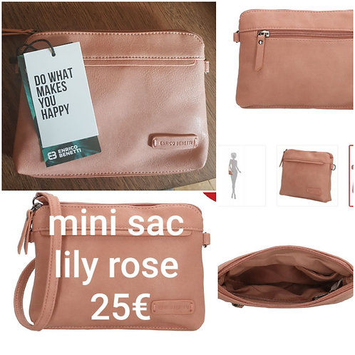 Mini sac lily rose
