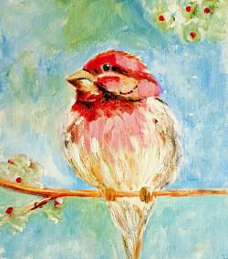 day 20 red bird