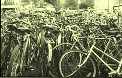 Bike Series 1