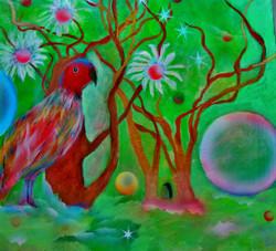 Dream of The Birds
