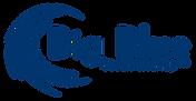 Big Blue-logo.png
