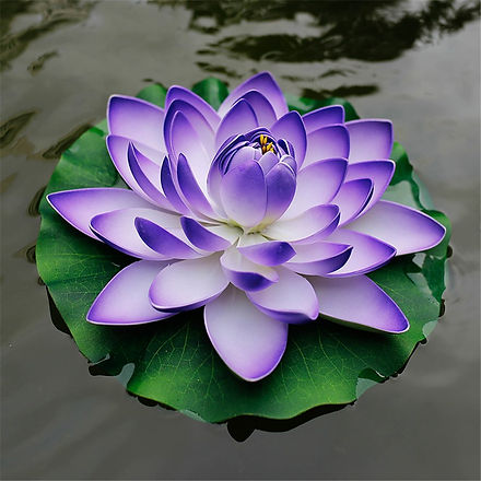 purple lotus.jpg