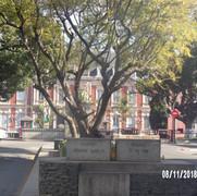pałac prezydenta