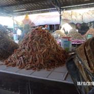 owoce morza (kanału Mozambickiego)
