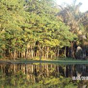 piekne jezioro Ravelobe