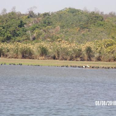 jezioro Ravelobe