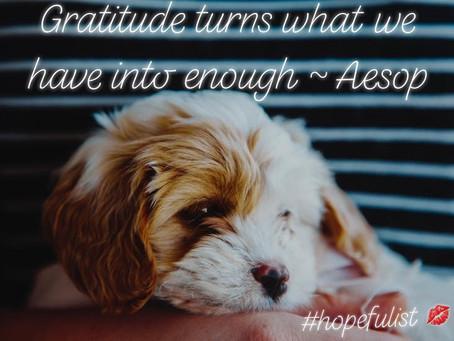 Back to Basics - It's about gratitude