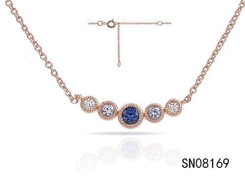 SN08169