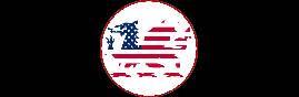 dragon U.S.A..png