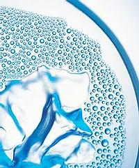 Closeup of a Petri Dish.webp