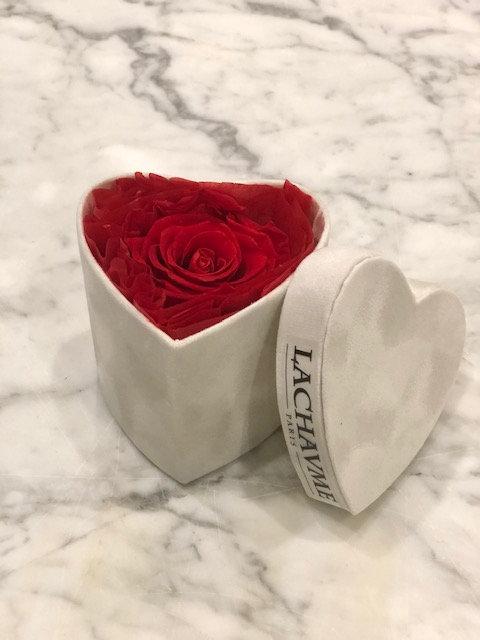 coffret coeur velours blanc rose éternelle rouge