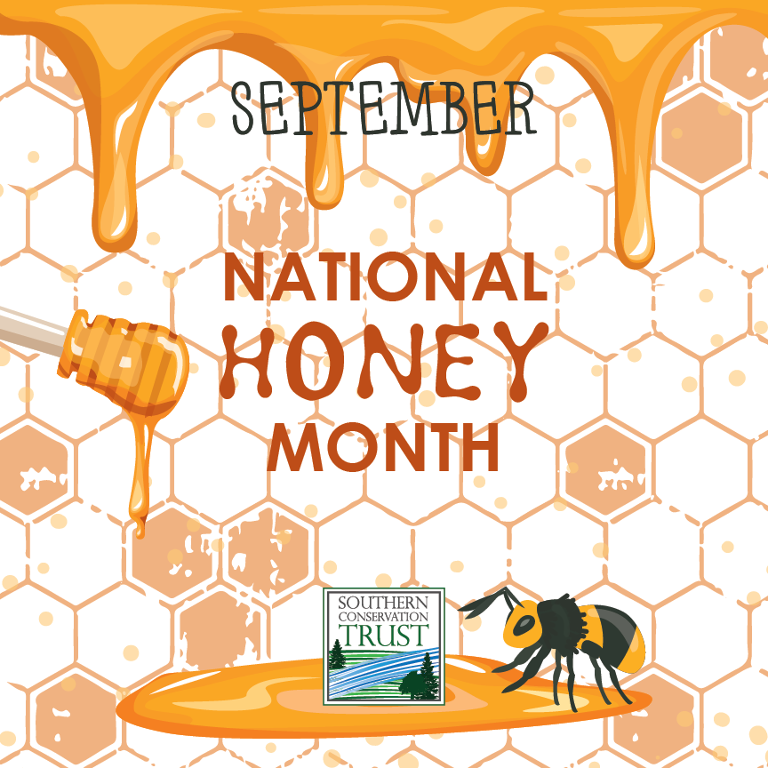 National-Honey-Month-Sept