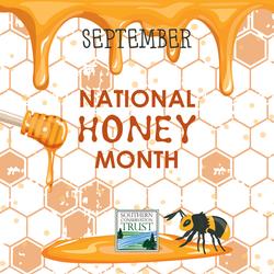 National-Honey-Month-Sept