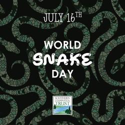 World-Snake-Day-7-16