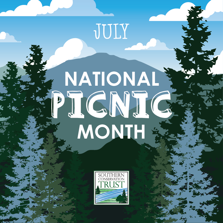 National-Picnic-Month-July