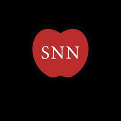 SNN-08