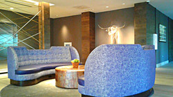 1m-cambria-hotel-southlake-reception-blue-sofas-md