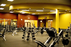 golds-gym-weight-room