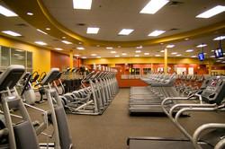 golds-exercise-equipment