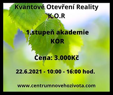 3.stupně online akademie KOR (4).png