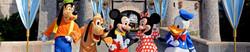 DisneyBanner.jpg