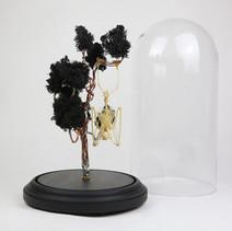 Squelette de chauve souris Roussetus leschenaulti suspendue à son arbre de lichen noir fait de cuivre et d'étain.   Dimensions : 50cm de haut avec le socle et 24cm de diamètre pour la cloche  DISPONIBLE Prix : 350€ Réf : OS329  Envoi possible, frais de port en sus