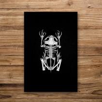 Tirage photo artistique 13x19cm  Squelette de grenouille  DISPONIBLE Quantité : 5 Prix : 5€ Réf : TIR02  Envoi possible, frais de port en sus. Offert à partir de 3 tirages