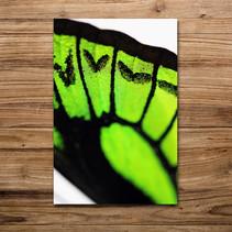 Tirage photo artistique 13x19cm  DISPONIBLE Quantité : 2 Prix : 5€ Réf : TIR18  Envoi possible, frais de port en sus. Offert à partir de 3 tirages
