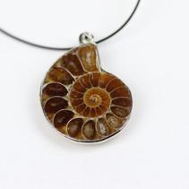 Fossile Ammonite en pendentif avec collier  (photo non contractuelle)  DISPONIBLE Prix : 18€ Réf : BIJAMM