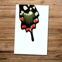 Tirage photo artistique 13x19cm  DISPONIBLE Quantité : 5 Prix : 5€ Réf : TIR22  Envoi possible, frais de port en sus. Offert à partir de 3 tirages