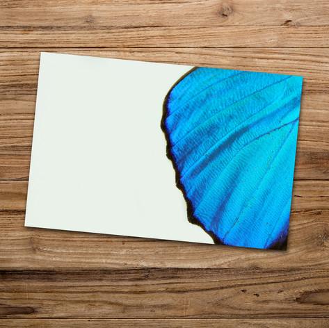 Tirage photo artistique 13x19cm  DISPONIBLE Quantité : 5 Prix : 5€ Réf : TIR23  Envoi possible, frais de port en sus. Offert à partir de 3 tirages