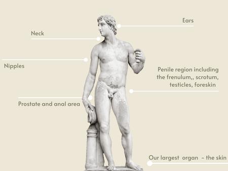 Man's erogenous zones