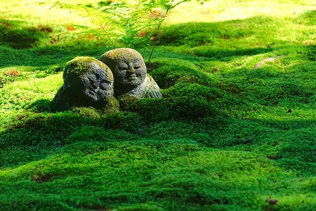 cuddle statues .jpg