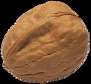 walnut 2.png