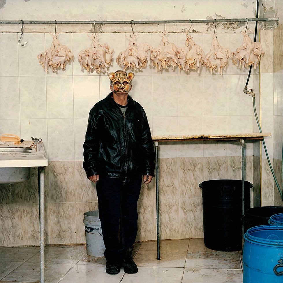 Contained taxi_driver Westbank Palestine Palestina Verena_Andrea_Prenner Verena_Prenner sociological_field_research sociological_field_studies soziologische_Feldforschung inszenierte_Fotografie staged_photography animals_in_the_zoo