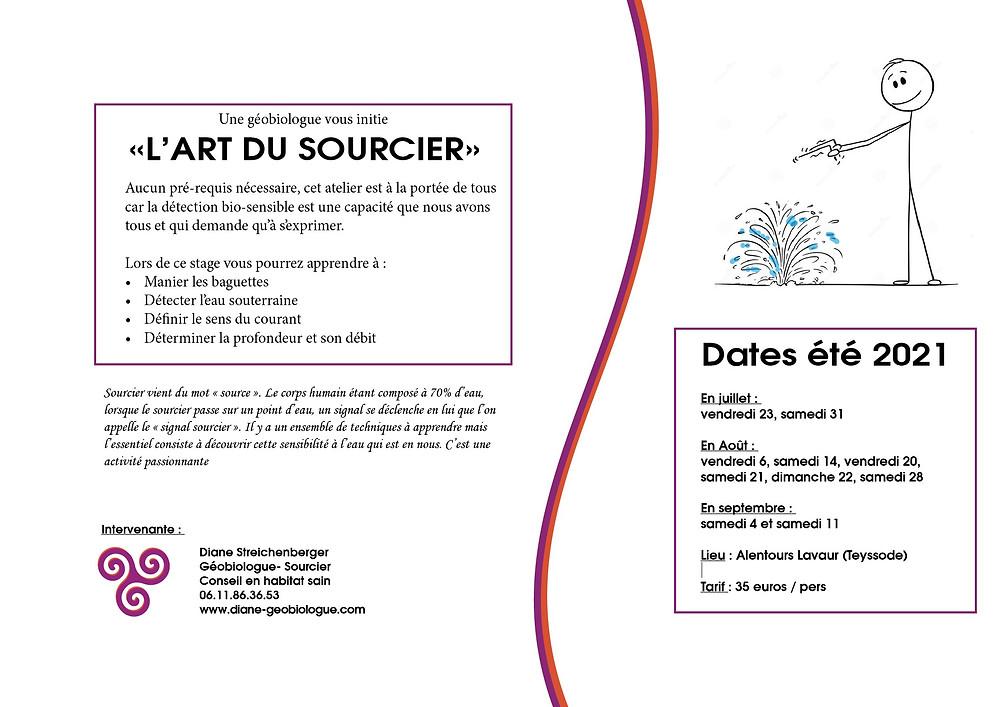 Affiche atelier sourcier Diane Streichenberger Géobiologue