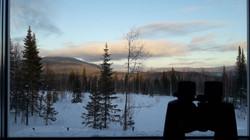 Вид из окна на долину