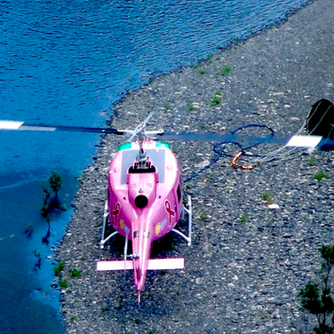 Lucy pink helicopter firefighting