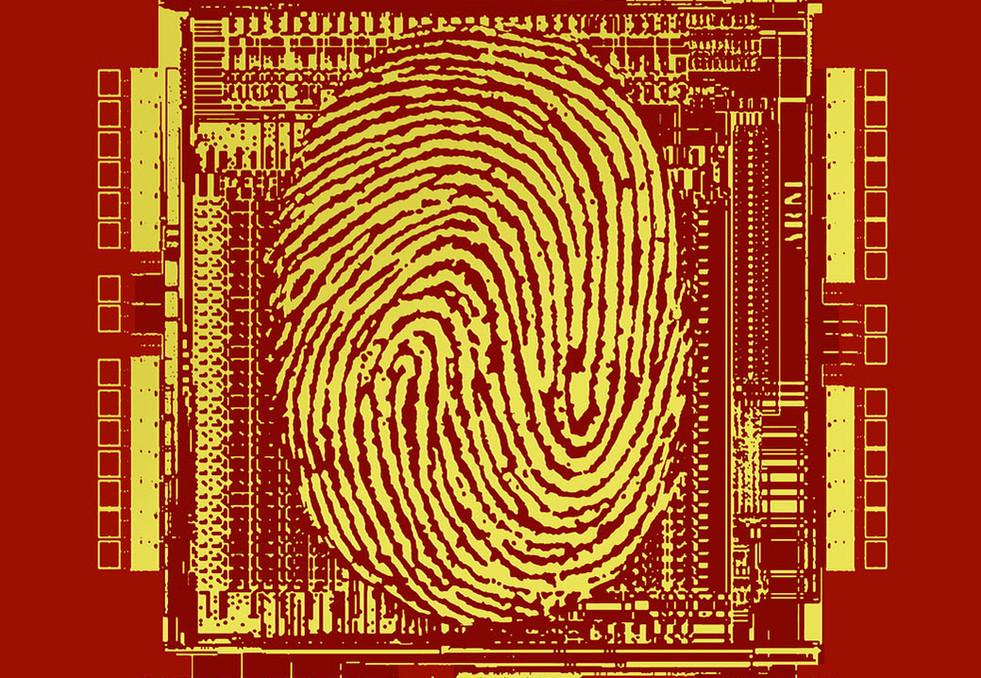 i556s-087-PRIVACY-RED-VARIATION.jpg