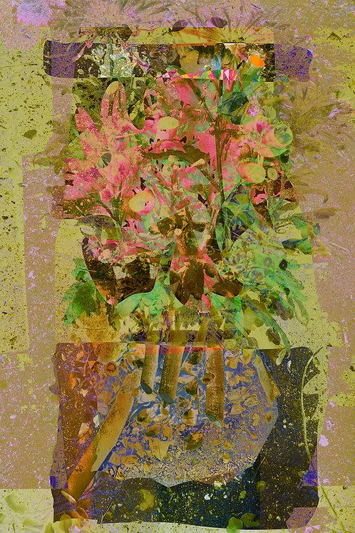 Earthy flowers