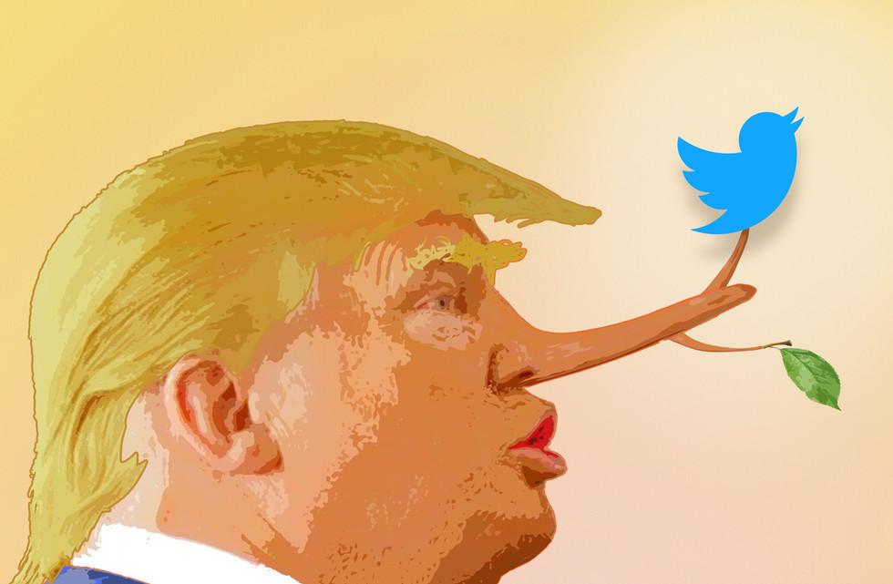 Twitter Lies